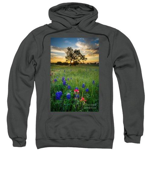 Ennis Tree Sweatshirt