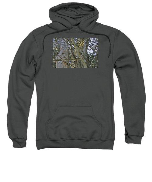 Eucalyptus Study Sweatshirt