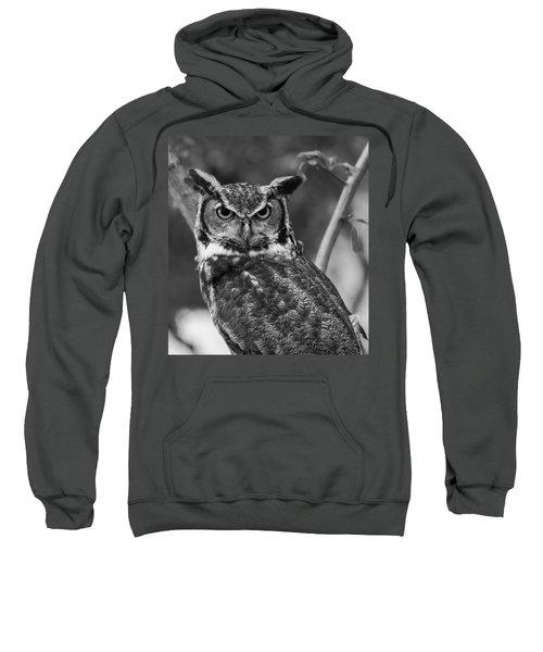 Eurasian Eagle Owl Monochrome Sweatshirt