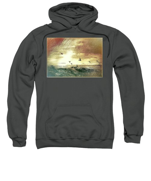 Evening Flight Sweatshirt