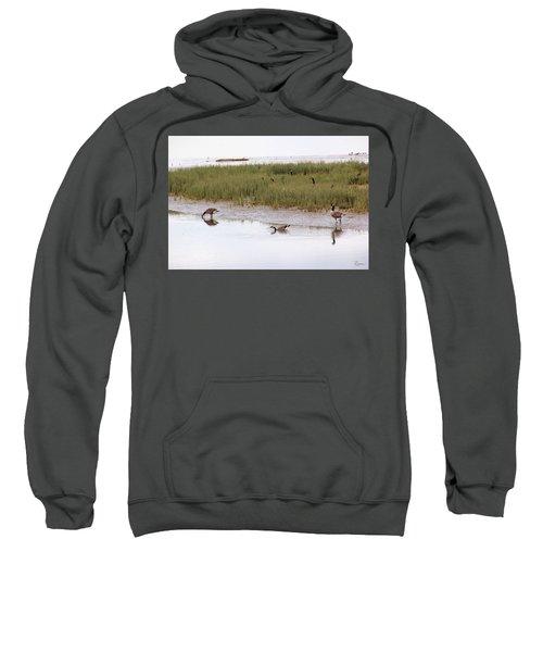 Evening Stollers Sweatshirt
