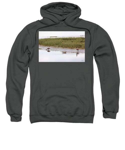Evening Stollers Sweatshirt