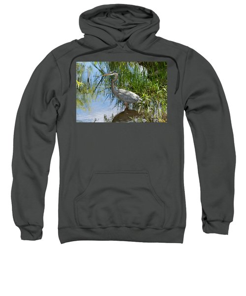 Everglades 572 Sweatshirt
