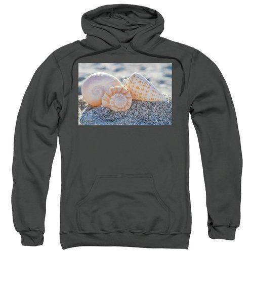 Every Shell Has A Story Sweatshirt