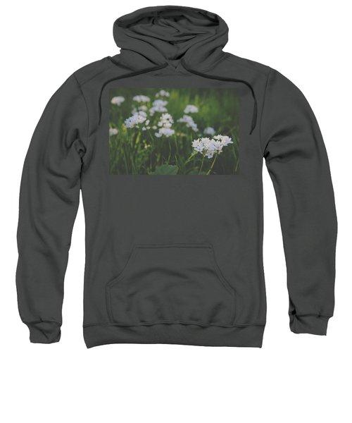 Everything Is New Again Sweatshirt