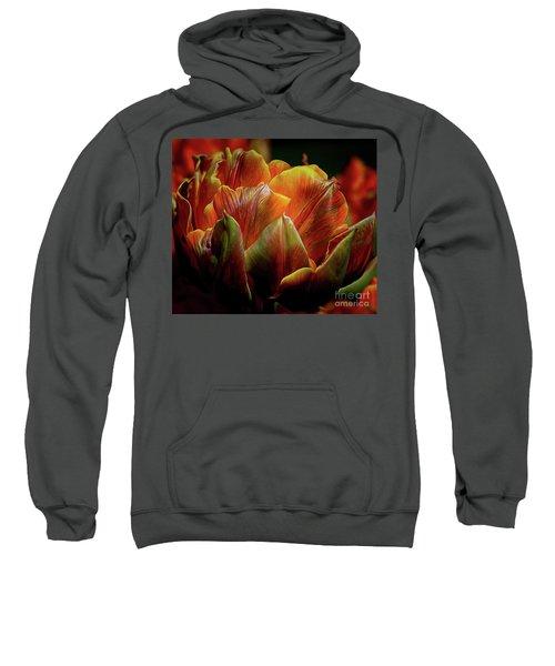 Extraordinary Passion Sweatshirt