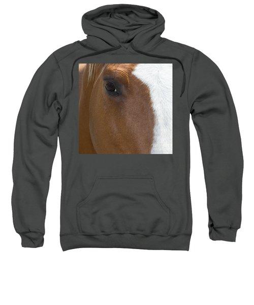 Eye On You Horse Sweatshirt