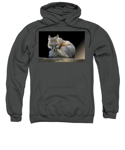 Eyes Of The Fox Sweatshirt