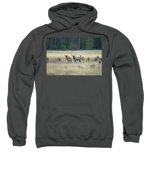 Faabullelk110 Sweatshirt