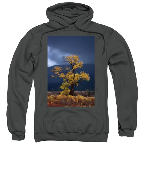 Facing The Storm Sweatshirt by Edgars Erglis