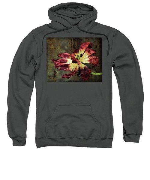 Faded Elegance Sweatshirt