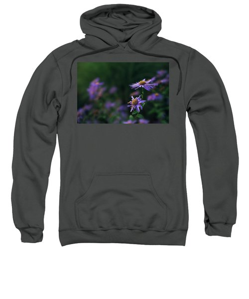 Fading Beauty Sweatshirt