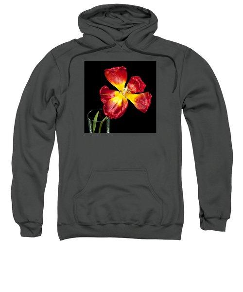 Fading Beauty Sweatshirt