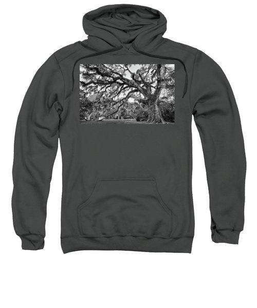 Fairchild Tree Sweatshirt