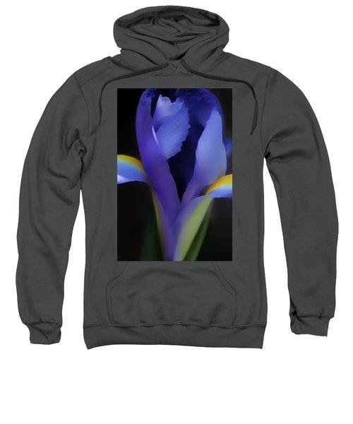 Faith And Hope  Sweatshirt
