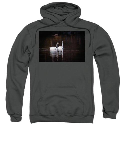 Faithfulness Sweatshirt