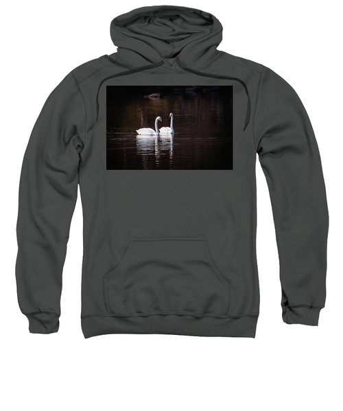 Faithfulness Sweatshirt