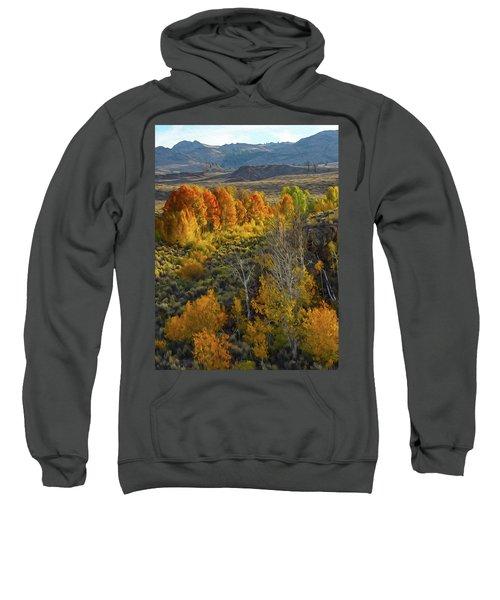 Fall Colors At Aspen Canyon Sweatshirt