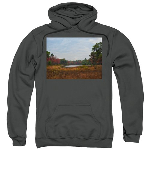 Fall Colors At Gladwin 4459 Sweatshirt