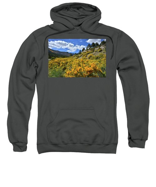 Fall Colors Come To Mt. Charleston Sweatshirt