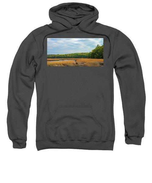 Fall Colors In Edgecomb Sweatshirt