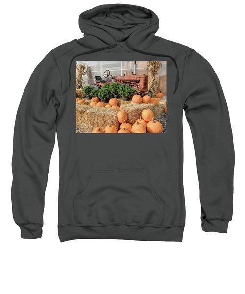 Fall Display Sweatshirt
