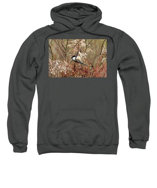 Fall Harvest Chickadee Sweatshirt