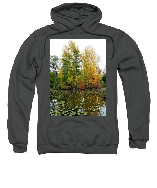 Fall In Kaloya Park 10 Sweatshirt