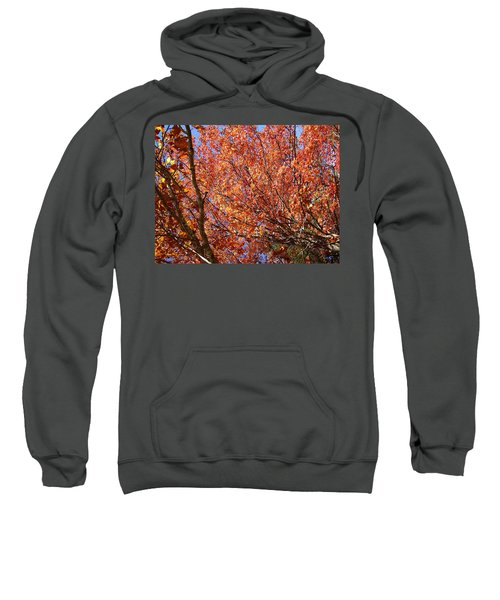 Fall In The Blue Ridge Mountains Sweatshirt