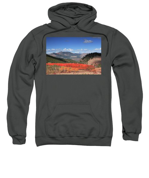 Fall In  Ute Trail  Sweatshirt