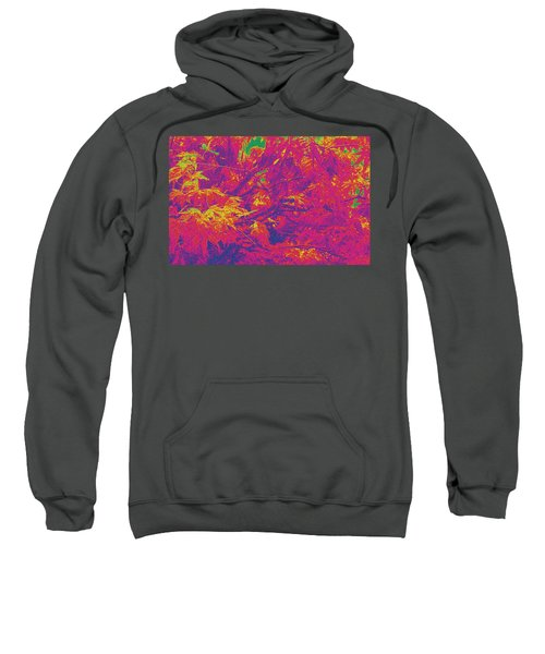 Fall Leaves #14 Sweatshirt