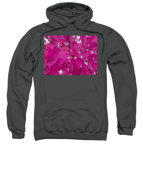 Fall Leaves #5 Sweatshirt