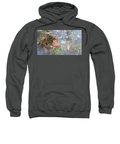 Fall Leaves In A Frozen Puddle Sweatshirt