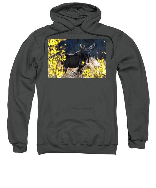 Fall Moose Sweatshirt