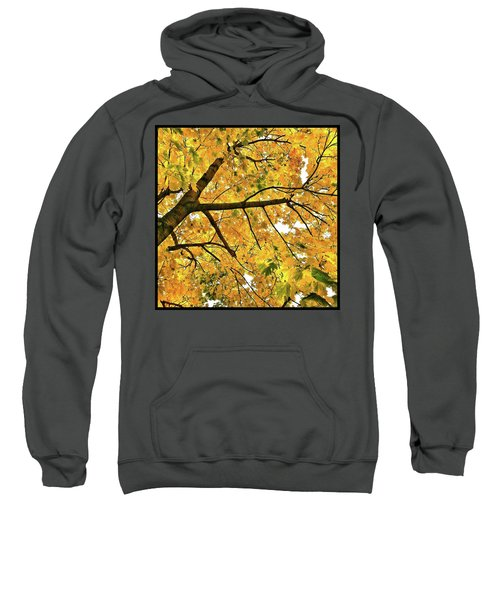 Fall On William Street Sweatshirt