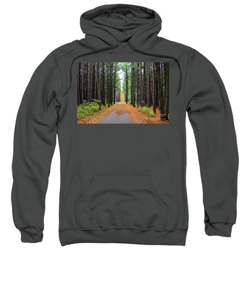 Fall Pines Road Sweatshirt