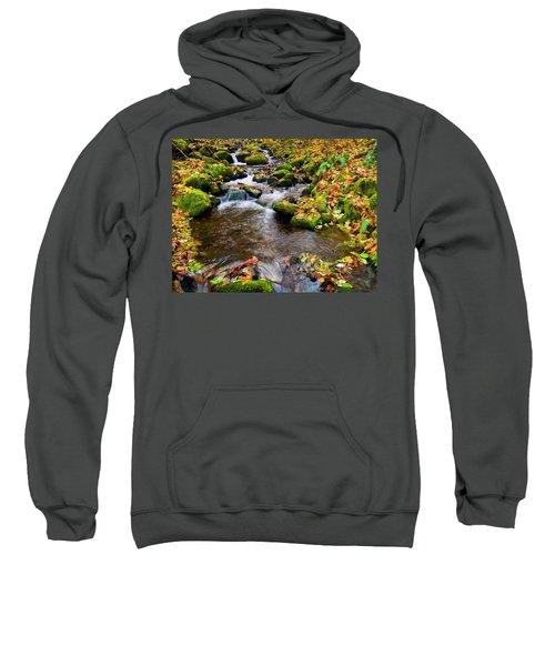 Fall Splendor Sweatshirt