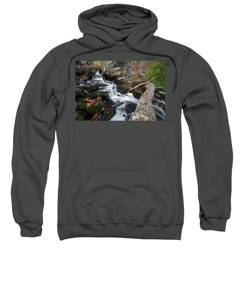 Fallen In Danforth Falls Sweatshirt
