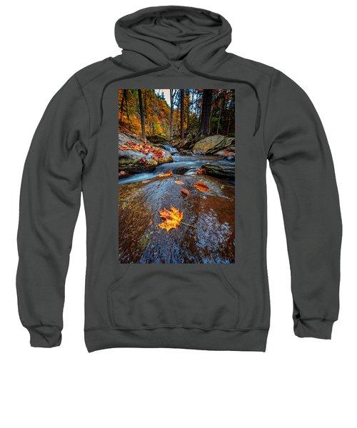Fallen Sweatshirt
