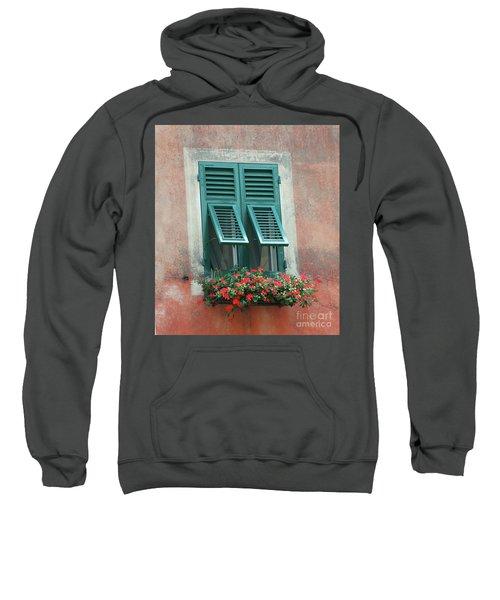 Faux  Painting Window  Sweatshirt