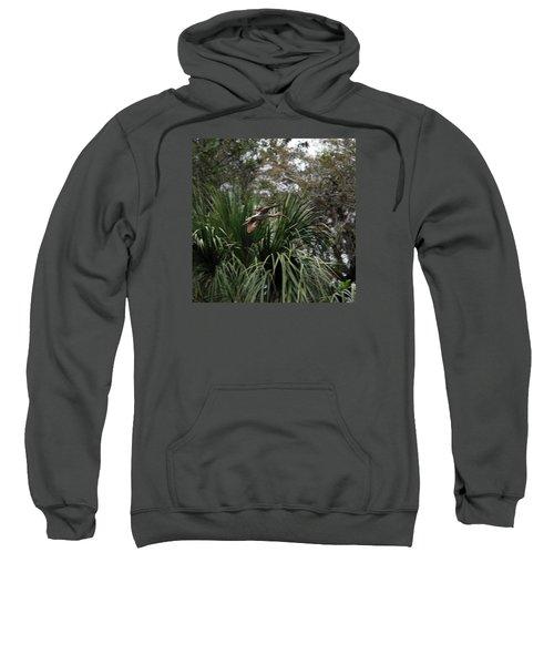 Feather 8-10 Sweatshirt by Skip Willits