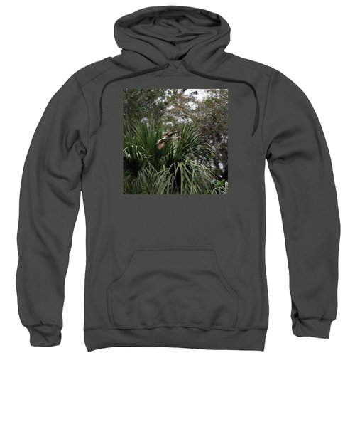 Feather 8-10 Sweatshirt