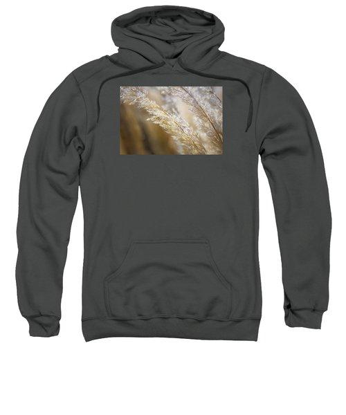Feathered Sweatshirt