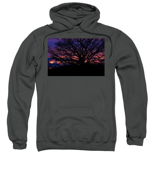 February Sunset Sweatshirt