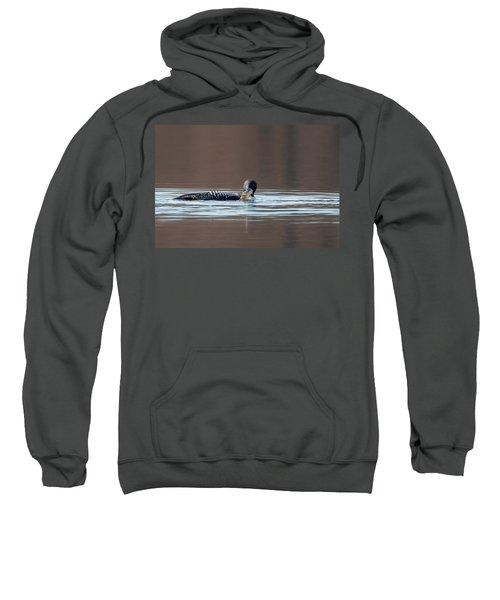 Feeding Common Loon Sweatshirt by Bill Wakeley