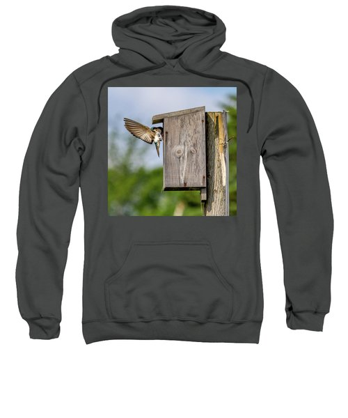 Feeding Time Sweatshirt