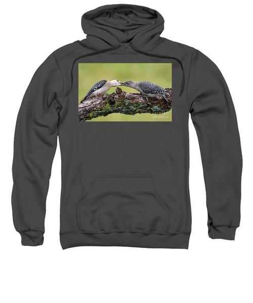 Feeding Time Sweatshirt by Ricky L Jones