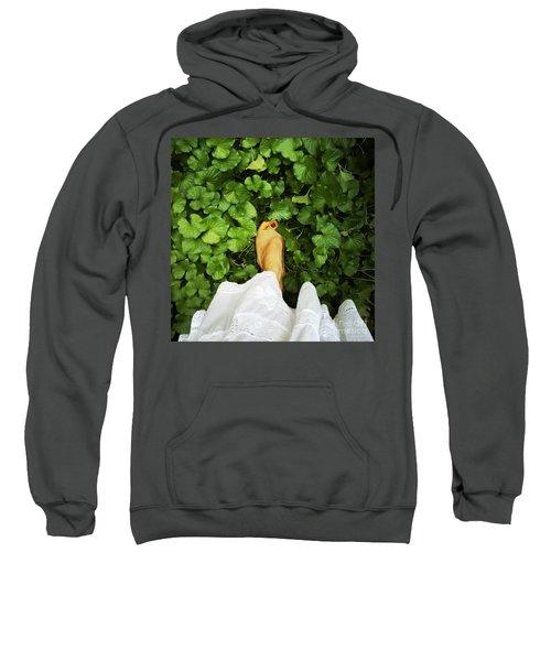 Feet Around The World #3 Sweatshirt