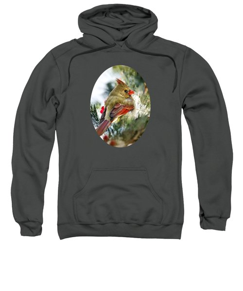 Female Northern Cardinal Sweatshirt by Christina Rollo