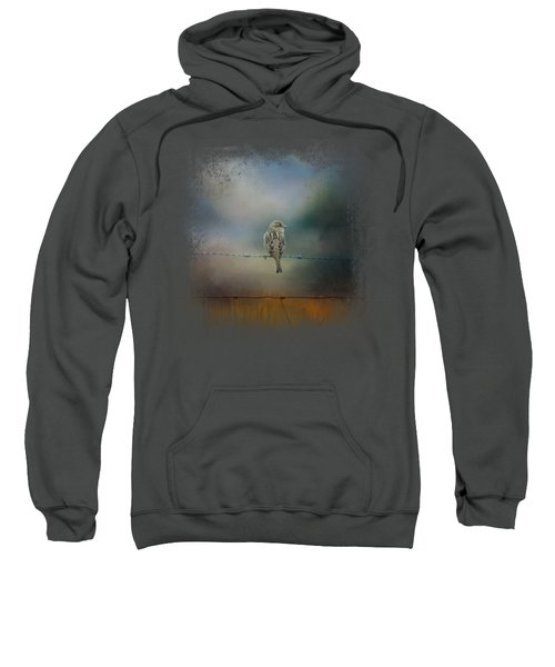 Fence Master Sweatshirt by Jai Johnson